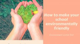 How to make your school environment-friendly