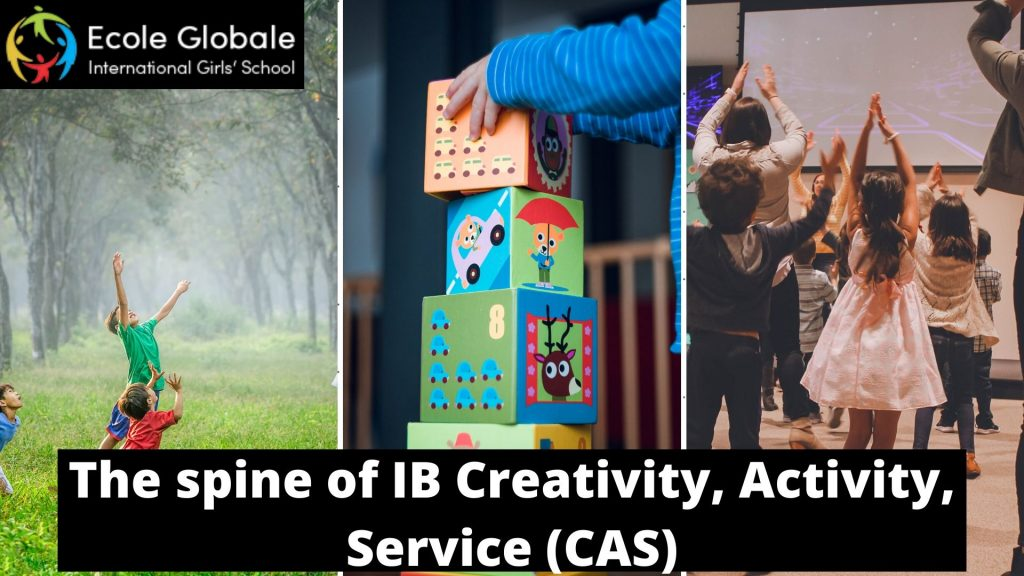 The spine of IB creativity activity service CAS