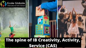 The spine of IB creativity activity service CAS