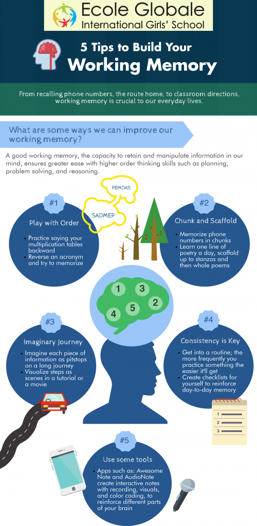 How to build your working memory