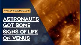 ASTRONAUTS GOT SOME SIGNS OF LIFE ON VENUS