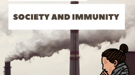 Adverse Effects Of Pollution On Society and Its Immunity